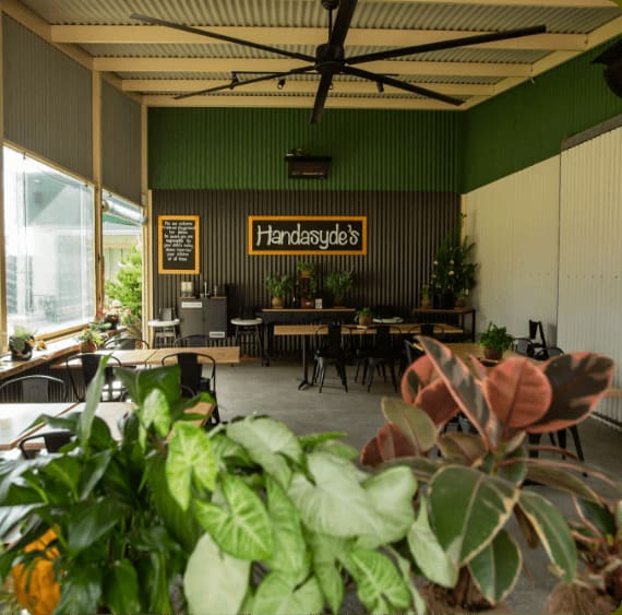 cafe with plants