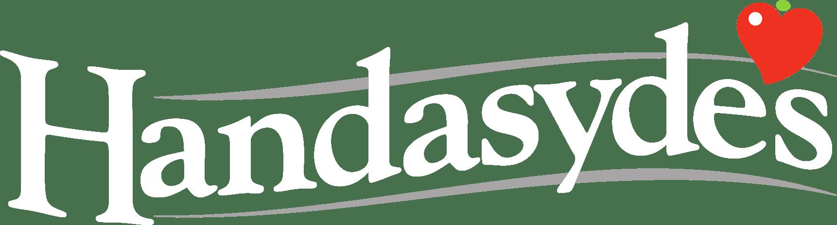 Handasydes White Text logo